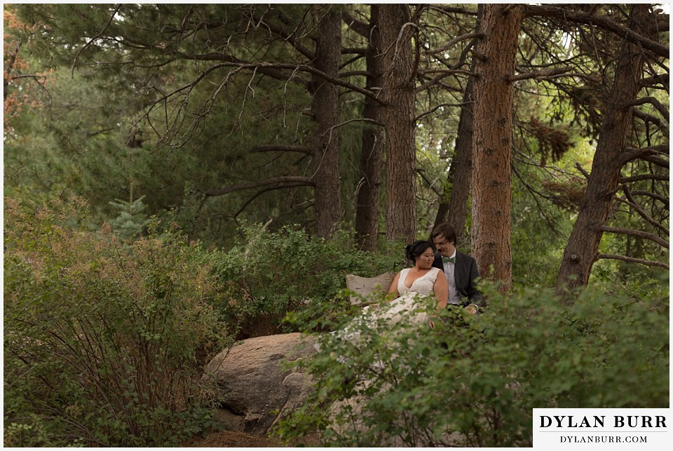 denver botanic gardens wedding colorado woodland mosaic bride groom snuggling together in pine trees on a bench