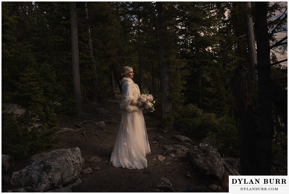 grand teton destination wedding bride alone in forest portrait