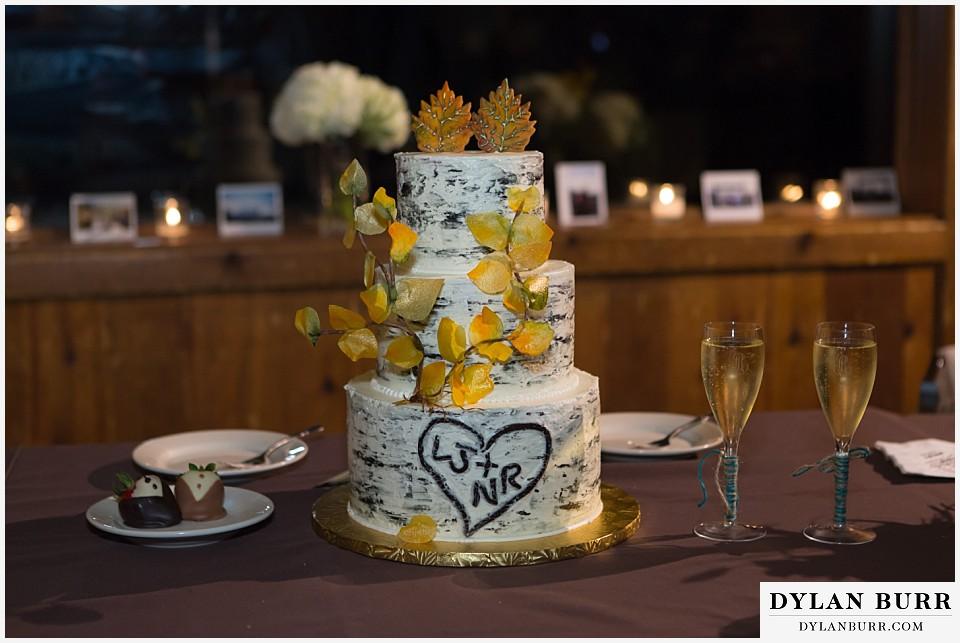 Grand Teton Wedding Destination Wedding Photographer
