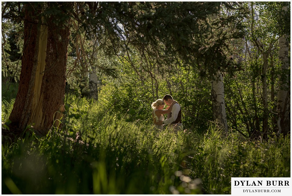 rocky mountain national park wedding elopement resting near aspen trees in tall grass
