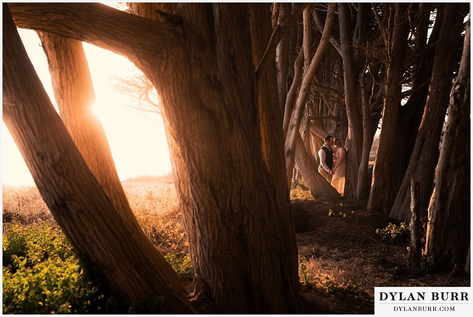 santa cruz california elopement wedding adventure bride and groom in cypress tree tunnel at sunset wide shot