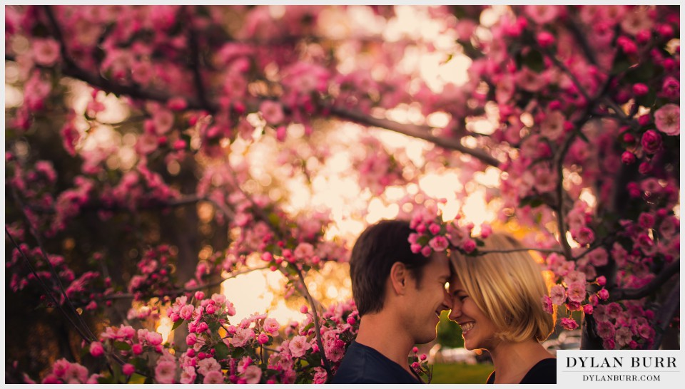 denver spring blossoms engagement photography