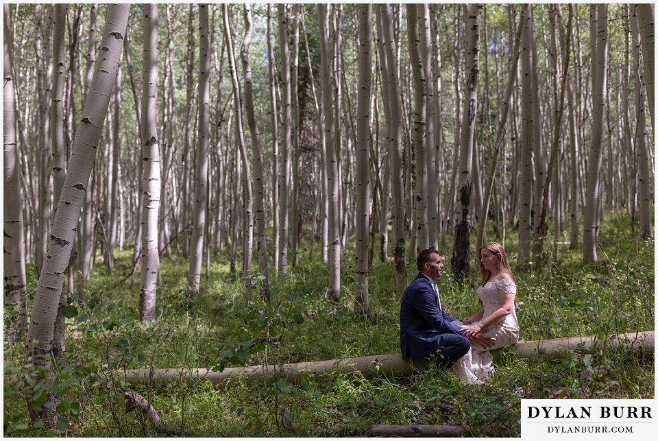uncompahgre national forest colorado elopement wedding adventure bride and groom sitting on tree together